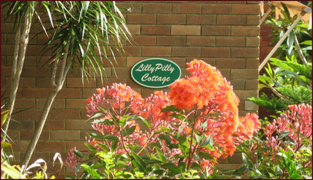 Lillypilly - Geraldton Accommodation