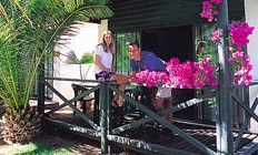 Desert Palms Resort - Geraldton Accommodation