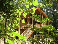Rivers Edge Rainforest Retreat