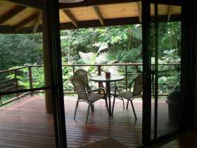 Cape Trib Exotic Fruit Farm Bed and Breakfast - Geraldton Accommodation