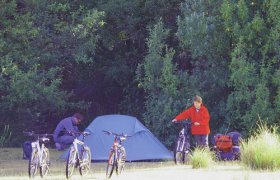 Maria Island Camping Ground - Geraldton Accommodation