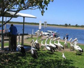 Mountain View Caravan and Mobile Home Village - Geraldton Accommodation