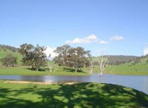 Hillview Farmstay - Geraldton Accommodation