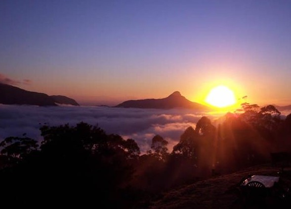 Spring Creek Mountain Cafe and Cottages
