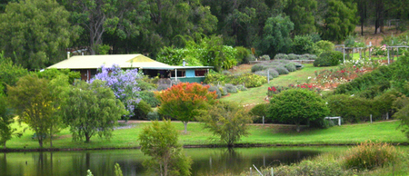 Lavender and Berry Farm - Geraldton Accommodation