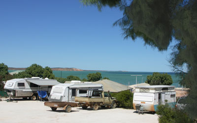 Blue Dolphin Caravan Park and Holiday Village - Geraldton Accommodation