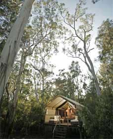 Paperbark Camp - Geraldton Accommodation