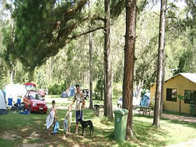 Glasshouse Mountains Holiday Village - Geraldton Accommodation