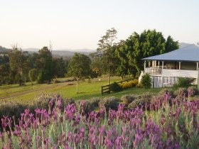 Blue Ridge Lavender Farm And Retreat - Geraldton Accommodation
