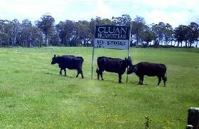 Cluan Homestead - Geraldton Accommodation