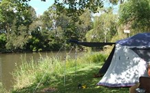 Williams River Holiday Park - Geraldton Accommodation