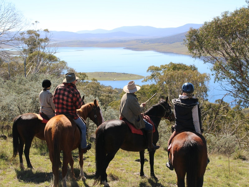 Reynella Homestead and Horseback Rides - Geraldton Accommodation