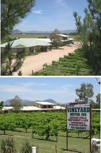 Mudgee Vineyard Motor Inn - Geraldton Accommodation