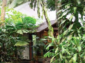 Heritage Lodge and Spa - In the Daintree - Geraldton Accommodation
