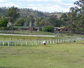 Kellarni Downs Farmstay-Scenic Rim - Geraldton Accommodation