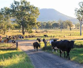 Tommerups Dairy Farmstay - Geraldton Accommodation