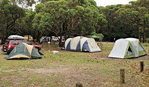 Pretty Beach Campground Murramarang National Park - Geraldton Accommodation