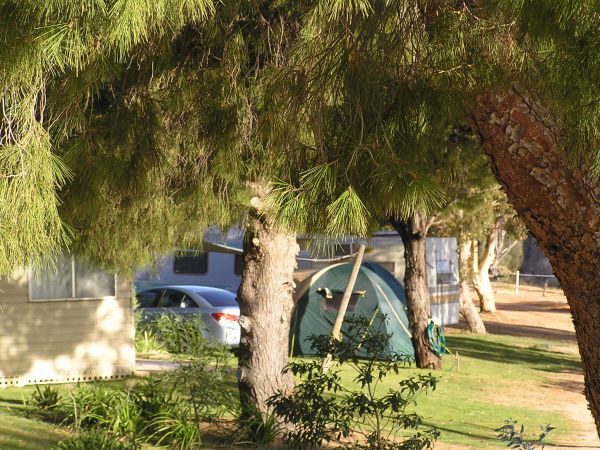 Barmera North Lake Caravan Park - Geraldton Accommodation