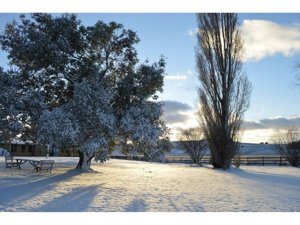 Snowy Mountains Resort - Geraldton Accommodation