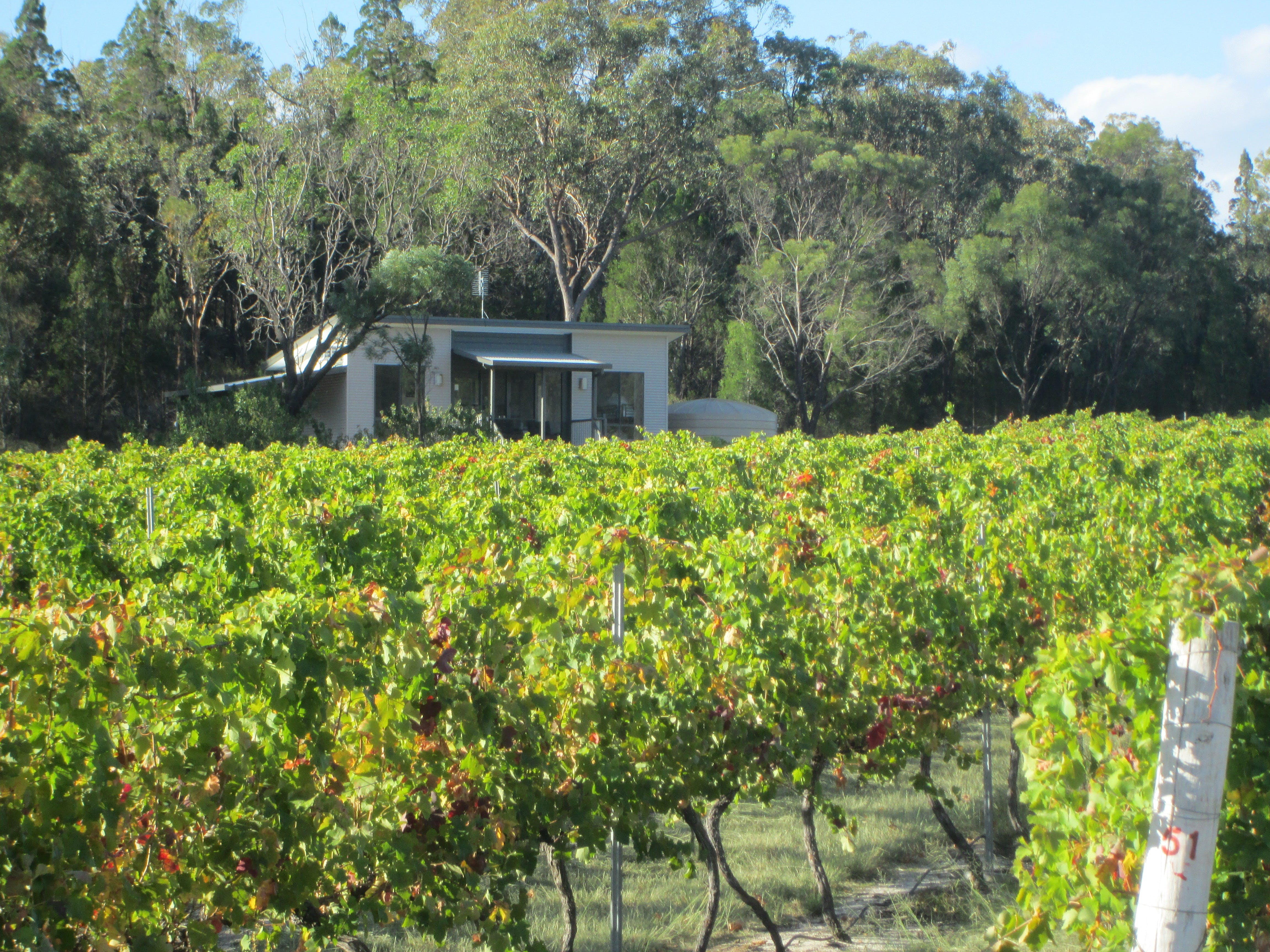 Just Red Wines Vineyard Cabins - Geraldton Accommodation