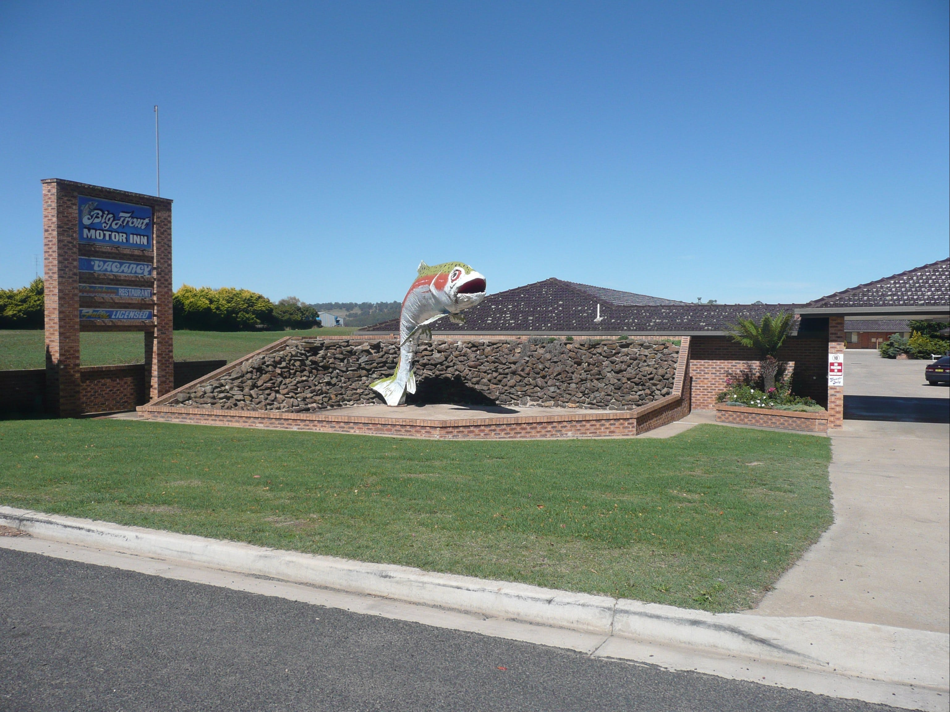 Big Trout Motor Inn - Geraldton Accommodation