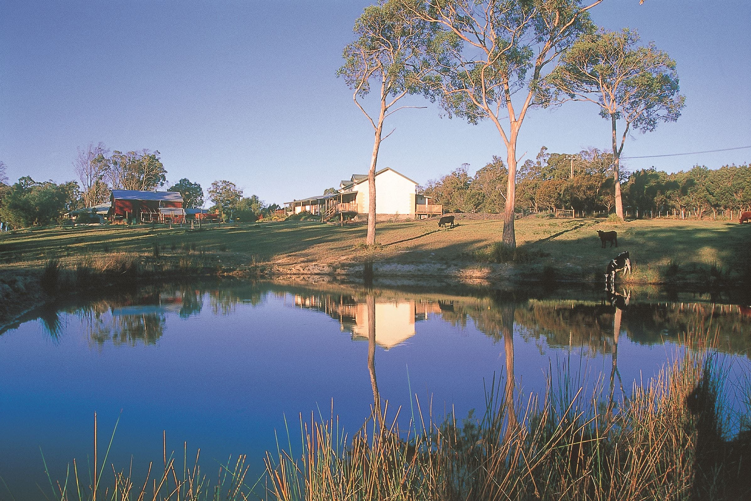 Platypus Park Country Retreat - Geraldton Accommodation