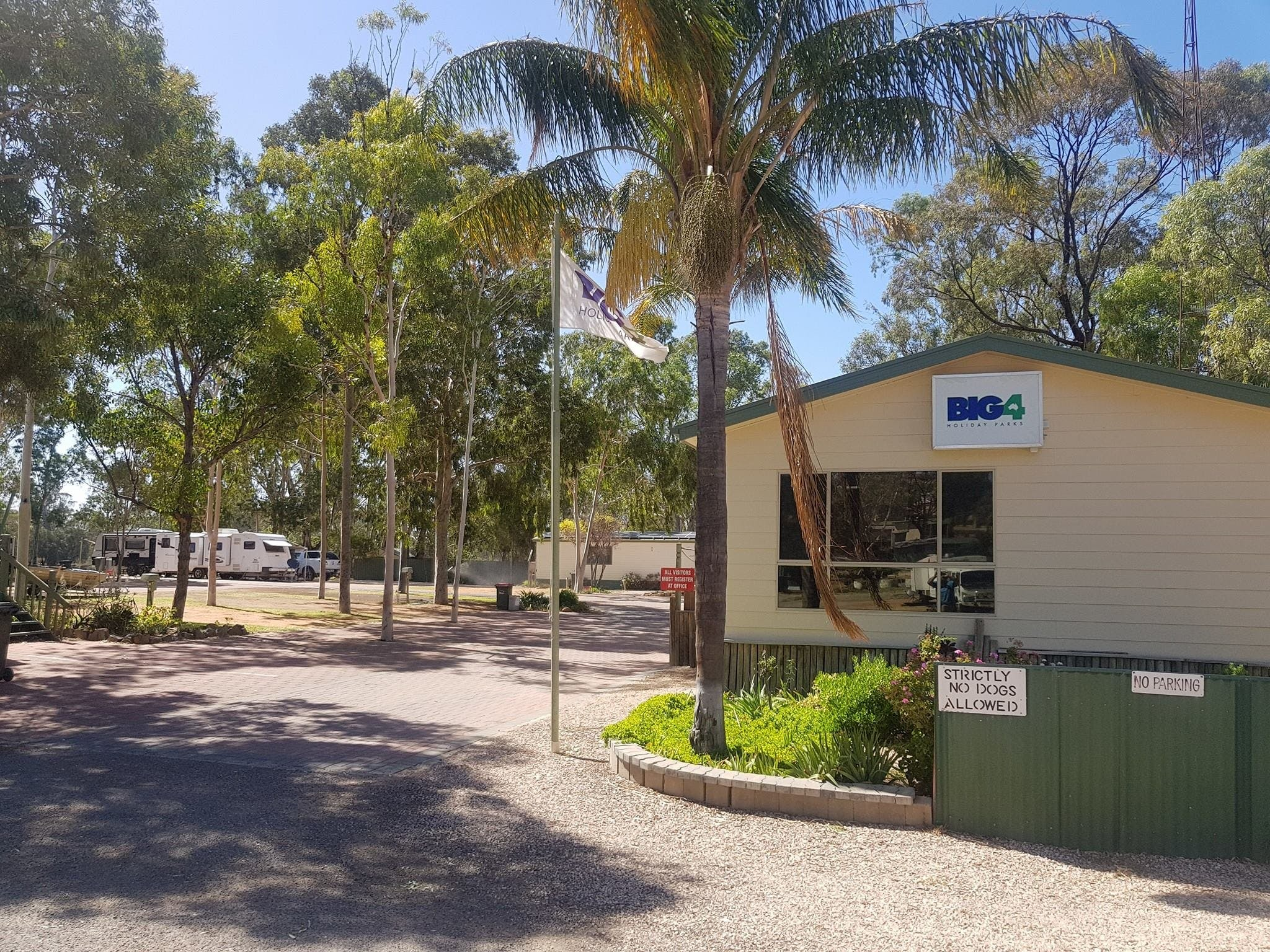 Big4 Blanchetown Riverside Holiday Park - Geraldton Accommodation