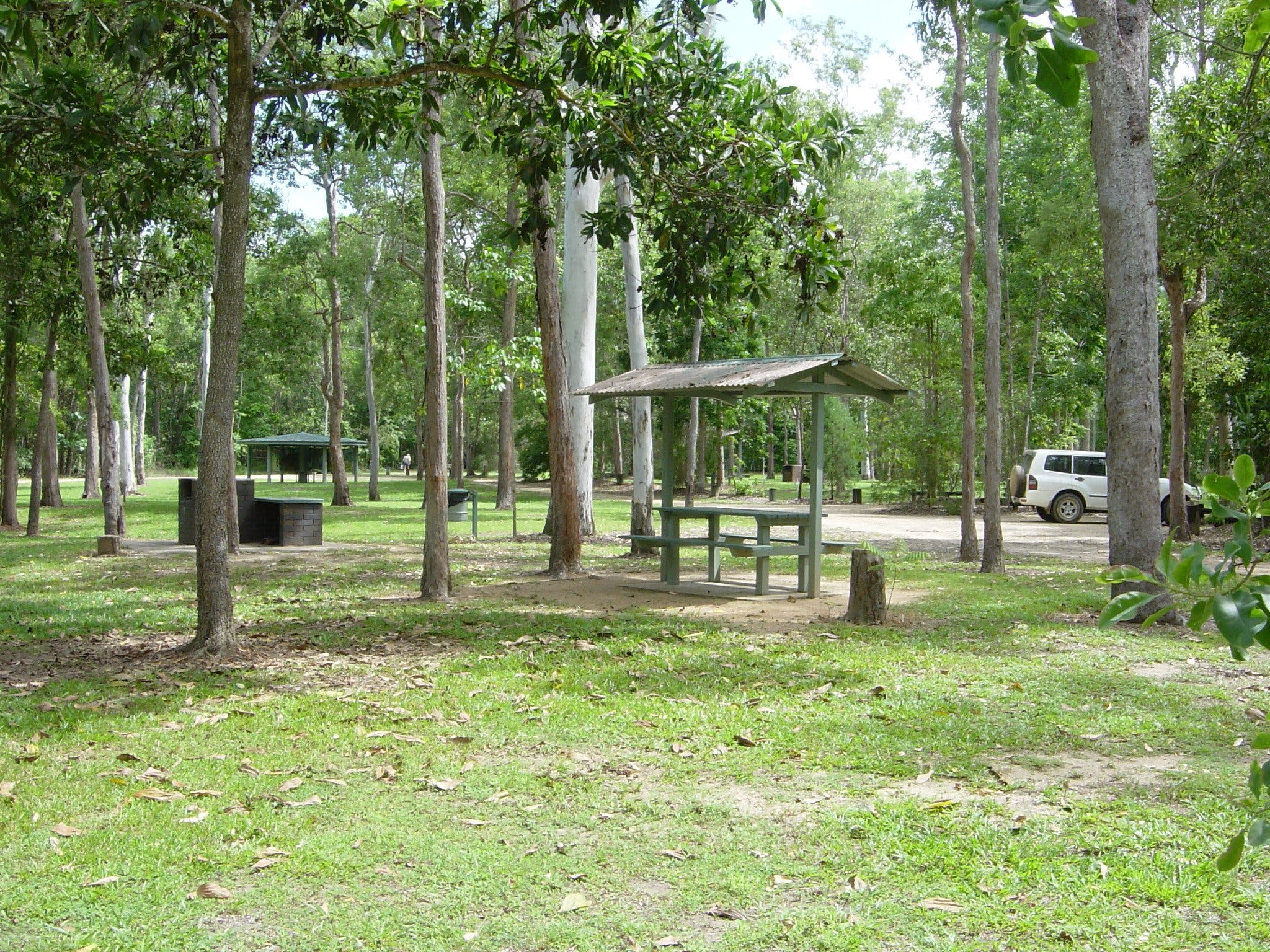 Broadwater camping area Abergowrie State Forest - Geraldton Accommodation