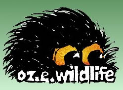 OZe Wildlife - Geraldton Accommodation