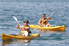 Manly Kayaks - Geraldton Accommodation