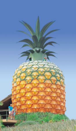 The Big Pineapple - Geraldton Accommodation