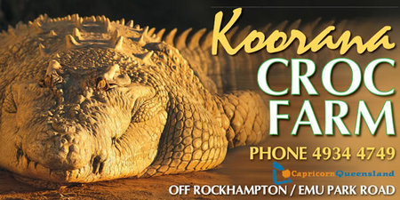 Koorana Saltwater Crocodile Farm - Geraldton Accommodation