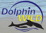 Dolphin Wild - Geraldton Accommodation