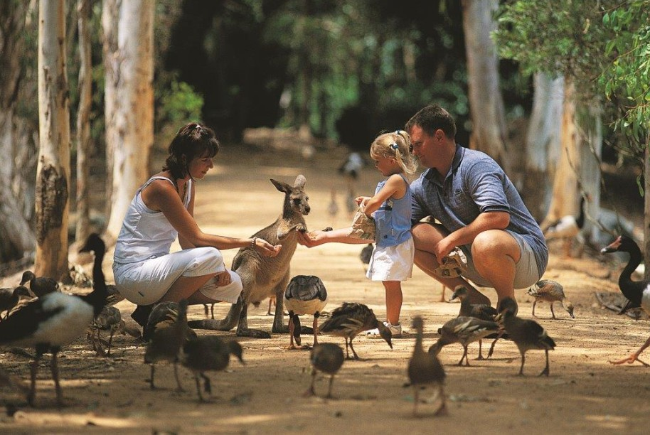 Billabong Sanctuary - Geraldton Accommodation