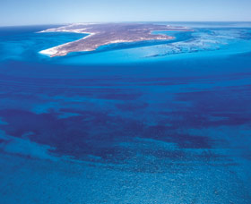 Dirk Hartog Island - Geraldton Accommodation
