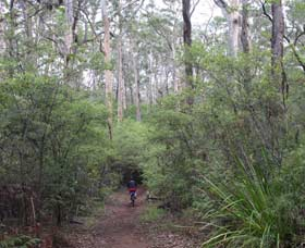 Margaret River Rails Trail - Geraldton Accommodation