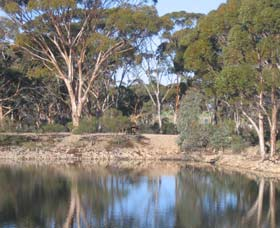 Merredin Railway Dam - Geraldton Accommodation