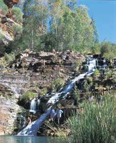 Fortescue Falls - Geraldton Accommodation