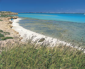 Coral Bay Walk Way - Geraldton Accommodation