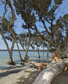 Stokes National Park - Geraldton Accommodation
