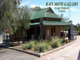 Rain Moth Gallery - Geraldton Accommodation
