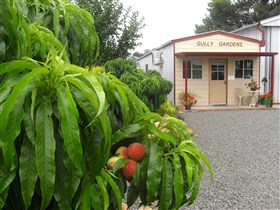 Gully Gardens - Geraldton Accommodation