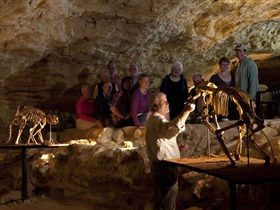 Naracoorte Caves National Park - Geraldton Accommodation