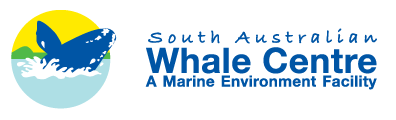 South Australian Whale Centre - Geraldton Accommodation