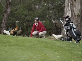 Tasmania Golf Club - The - Geraldton Accommodation