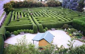 Westbury Maze and Tea Room - Geraldton Accommodation
