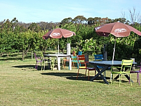 Cerise Brook Orchard  Family Golf - Geraldton Accommodation