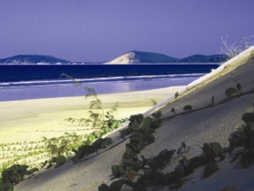 Cooloola Great Sandy National Park - Geraldton Accommodation