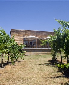Shantell Vineyard - Geraldton Accommodation