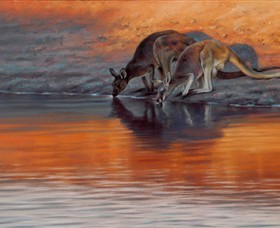 Steve Morvell Wildlife Art - Geraldton Accommodation